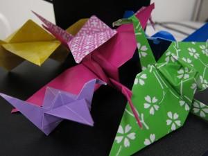Cranes 006